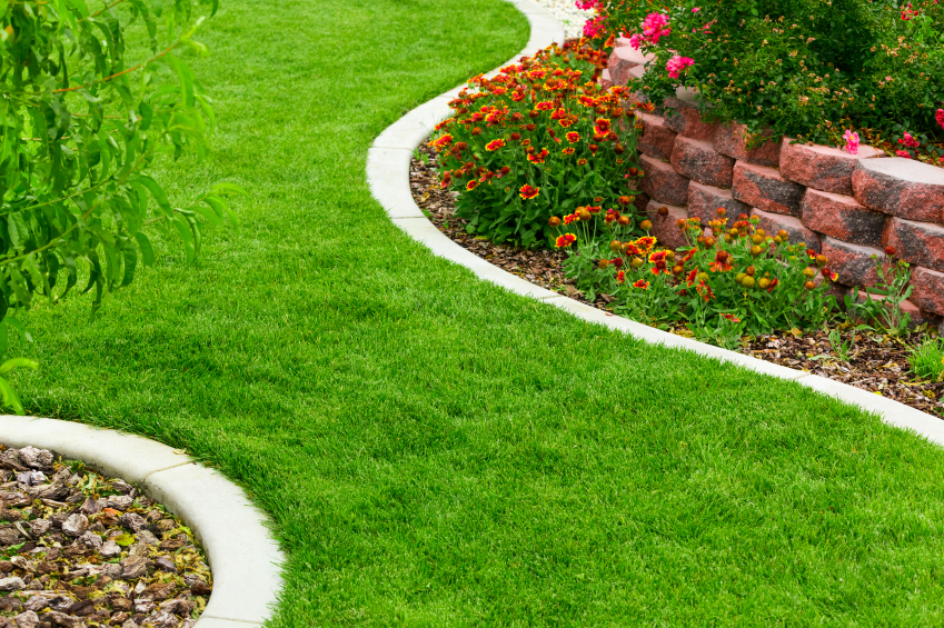 A 10-Point Plan for Landscaping (Without Being Overwhelmed)