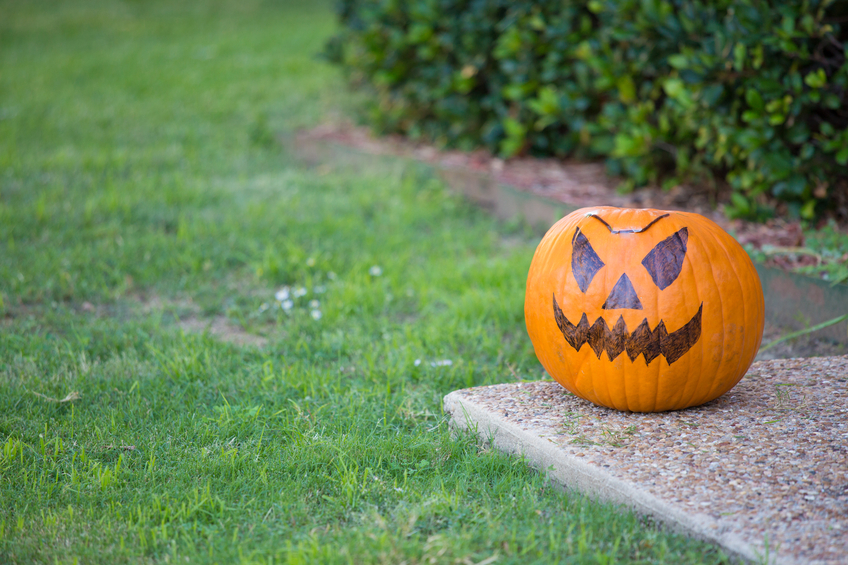 Closeup portrait, scary orange halloween jack o'lantern pumpkin sitting on sidewalk, isolated green trees and grass background. October 31st trick or treat