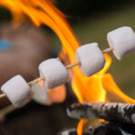 Close-up of marshmallows roasting in campfire