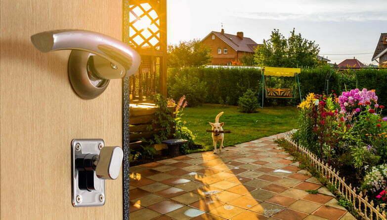 Behind the door open backyard at sunset