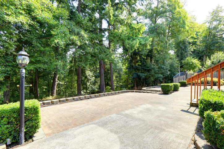 Backyard view with wooden fence, concrete floor and lots of fir trees around.
